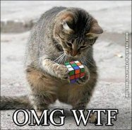 rubiks-cat-cube[1]