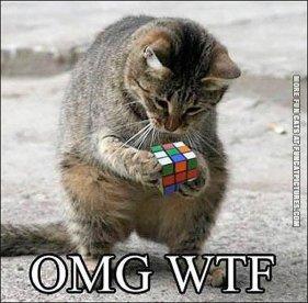 rubiks-cat-cube[1]
